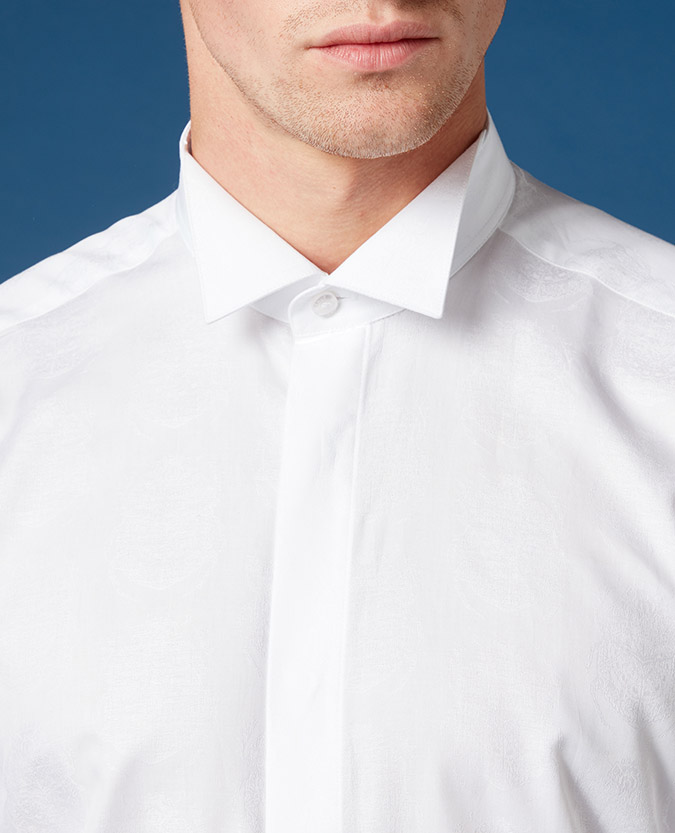 Tapered Fit Wing Collar Printed Shirt